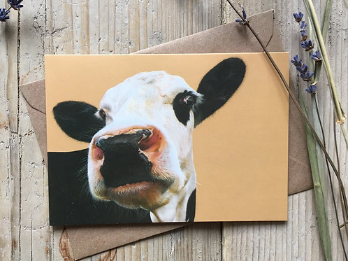 Cow Greeting Card 'Beady Eye'