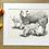 Thumbnail: Sheep original pencil drawing | 'Watchful eye'