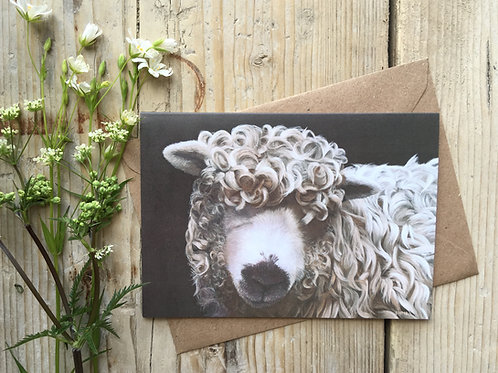 Greyface Dartmoor Sheep Greeting Card