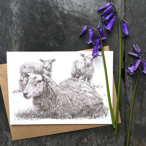 Sheep and lambs 'Springtime is here' greeting card