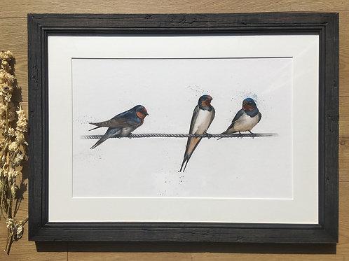 Swallows original Watercolour | Home bird