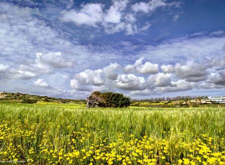 Explore Cyprus Nature