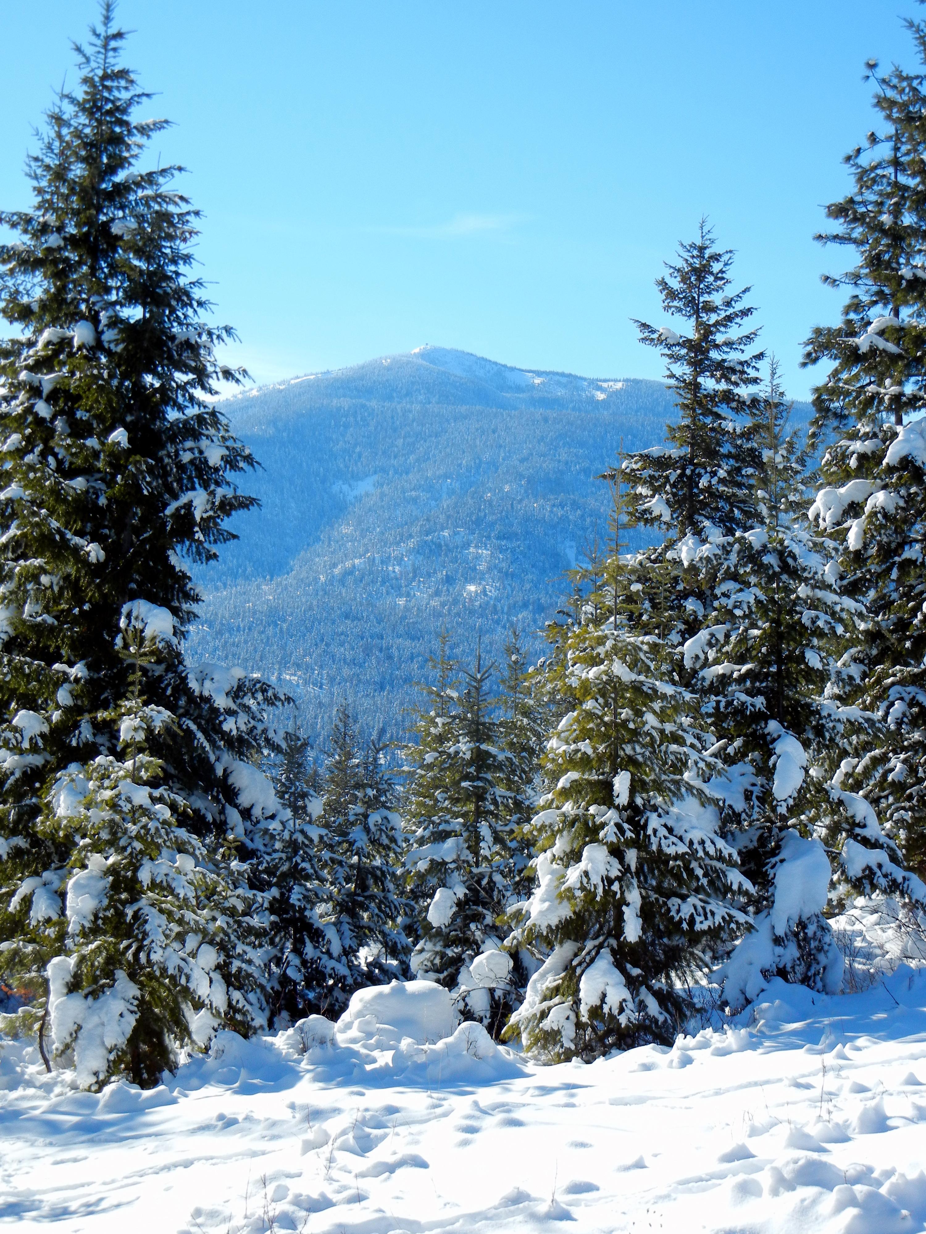 Nine Mile - Stark Mtn winter.jpg