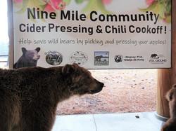 Cider Pressing Event Banner