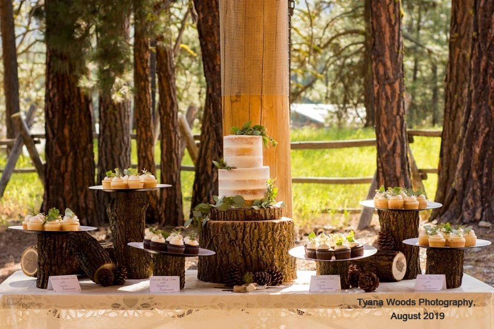 Tyana Woods Photography Pavilion Cakes_e