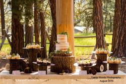Tyana Woods Photography Pavilion Cakes_e