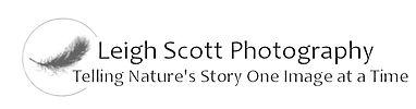 LeighScottPhotography.com Logo