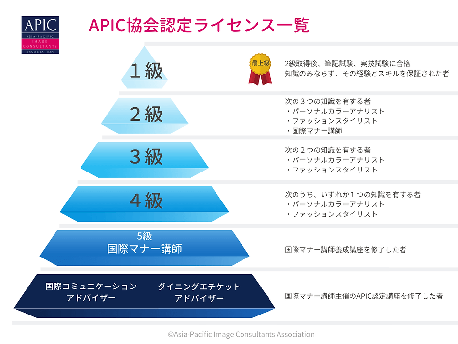 apic-image-consultants-certificate syste