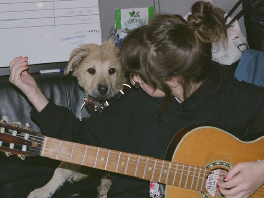 """Clairo's """"Sling"""" is change, puppy love and domestic duties"""