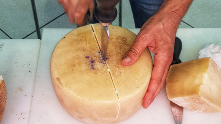 ICCPI President Visits One of the Finest Cheese Factory in Sardinia Italy