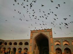 Tehran & Isfahan 131-01