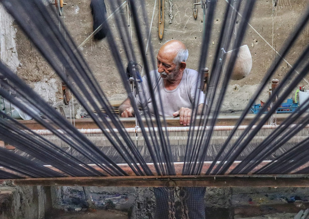The Last Weaver
