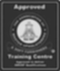 amusf logo.png