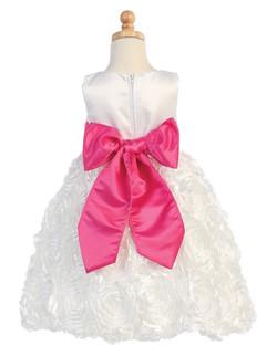 Flower Girl Dress - back