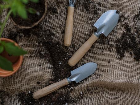 Estará o consumo de pesticidas na UE a diminuir?