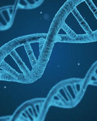 genes-1.jpg
