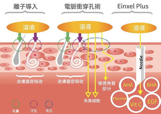 離子導入、電脈衝穿孔術與EINXEL PLUS