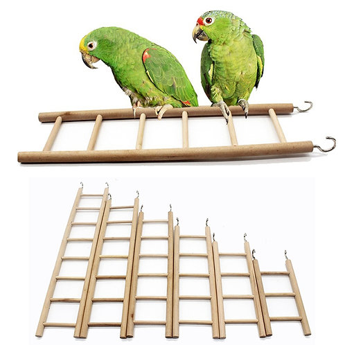 Wooden Ladders for Birds and Rodents