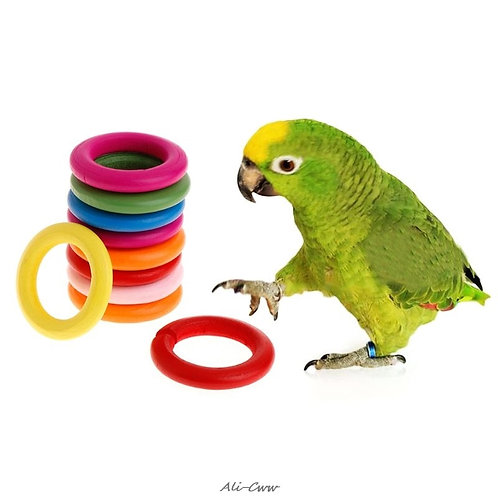 10 Pcs/Set Coloured Wooden Rings Chew Toys