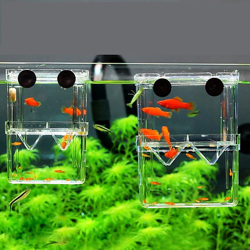 8*7*11cm Double-Deck Clear Aquarium Nursery