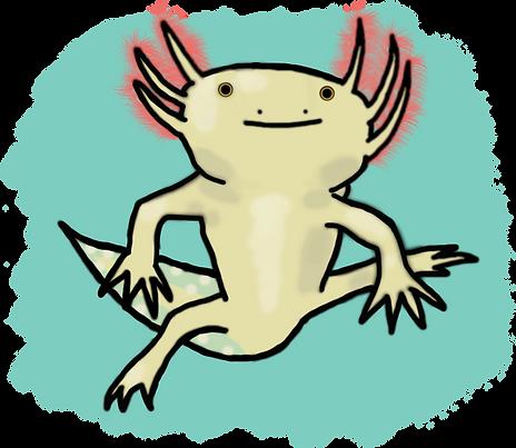 Axolotlsgolden.png