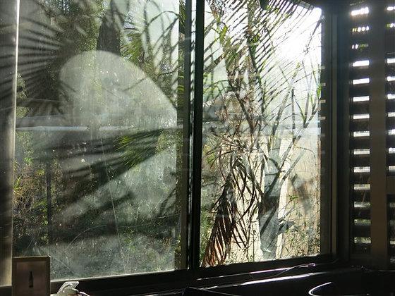 השתקפות בחלון
