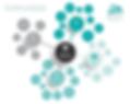 Competitor Deconstruct - Digital Native Consultants