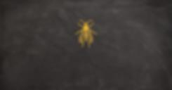 Wasp Yellow 2.png