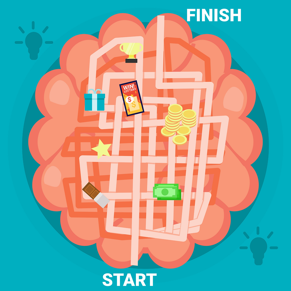 The Reward System Of The Brain Vector Art