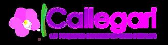 CALLEGARI 2017-1.png