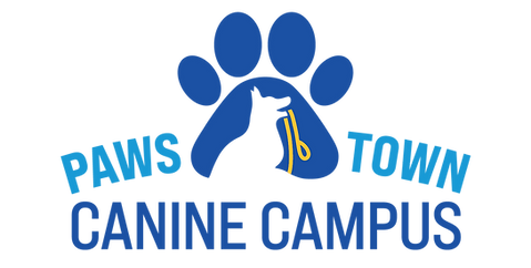 PawsTownLogos-CanineCampus-Revised_-3Col