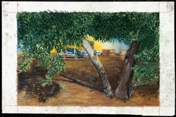 kaplan carmel   paintings   books