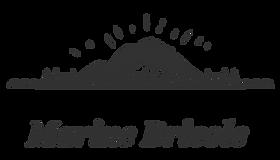 logo noir(charbon).png