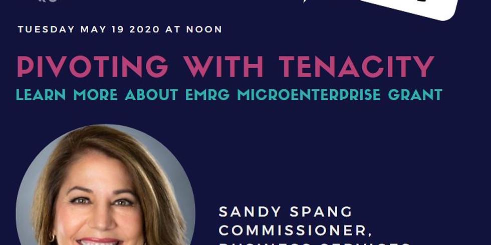Virtual- Power Hour Series XVII: Sandy Spang on EMRG