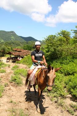 will mule
