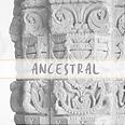ancestral, india, accesorios, bolsos hindu, bolsos de fiesta, hindu style, india, turismo, tour india, inda magica