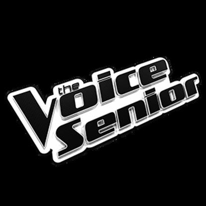 300x300-the-voice-senior-logo.png