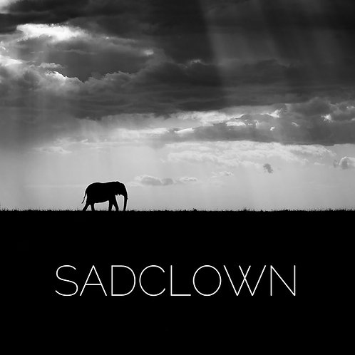 "Album Sadclown ""Format CD"""