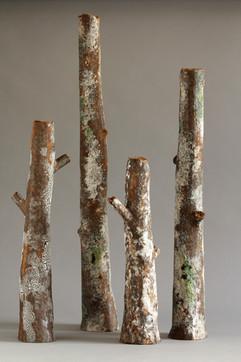 sherwood branch sand