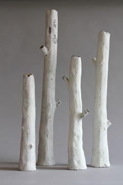 sherwood branch white