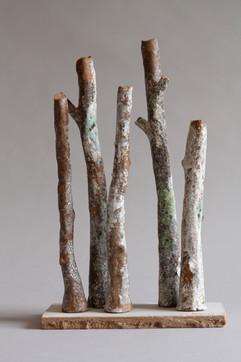 sherwood forest sand