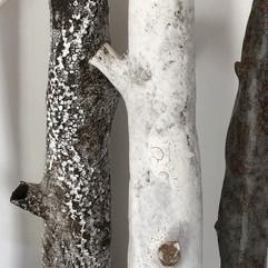 sherwood branch mix 2