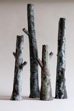 sherwood branch black