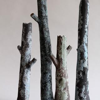 4 branches noires