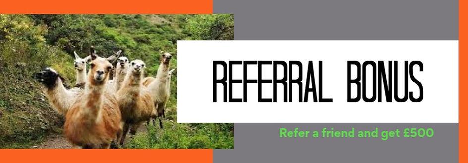 Referral Llama Pic.jpg