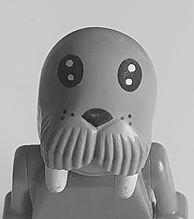walrus.jpg copy.jpg