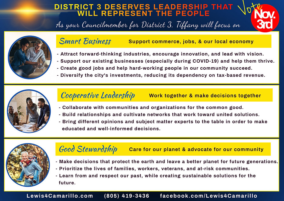 Meet The Candidate Postcard- Side 2.jpg
