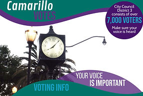 For Email- Voting Info Graphic.jpg