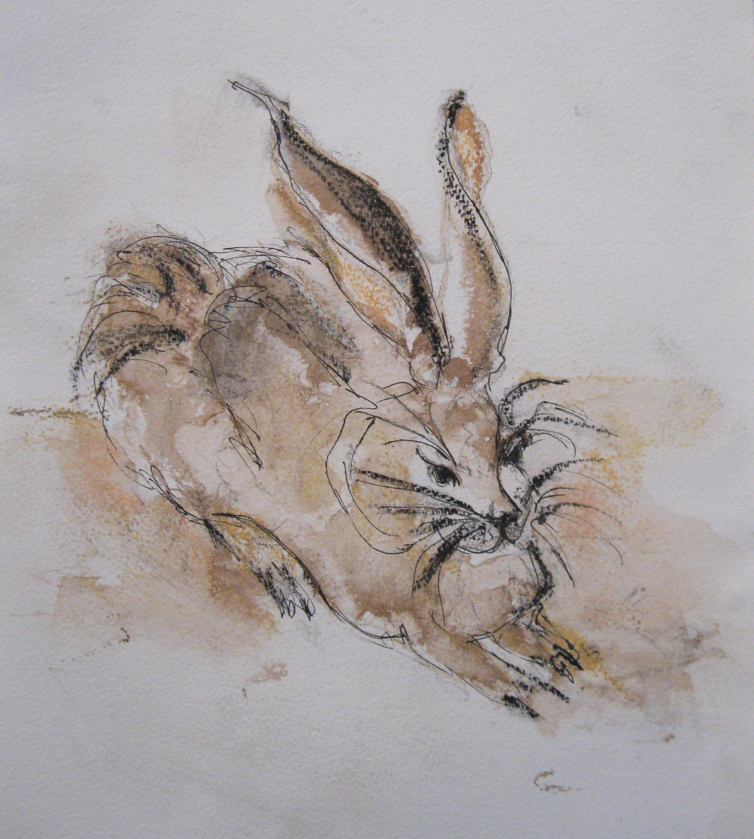 Rabbit - from Duhrer