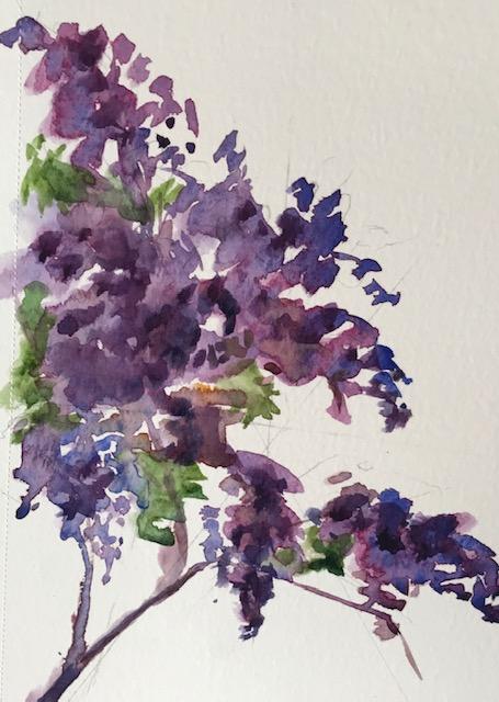 Lilacs WC